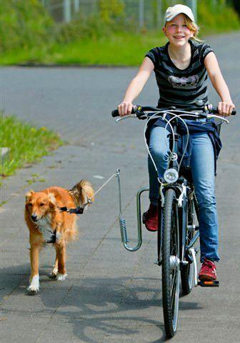 HEIM Fahrradhalter »Fahrradhalter für Hunde«