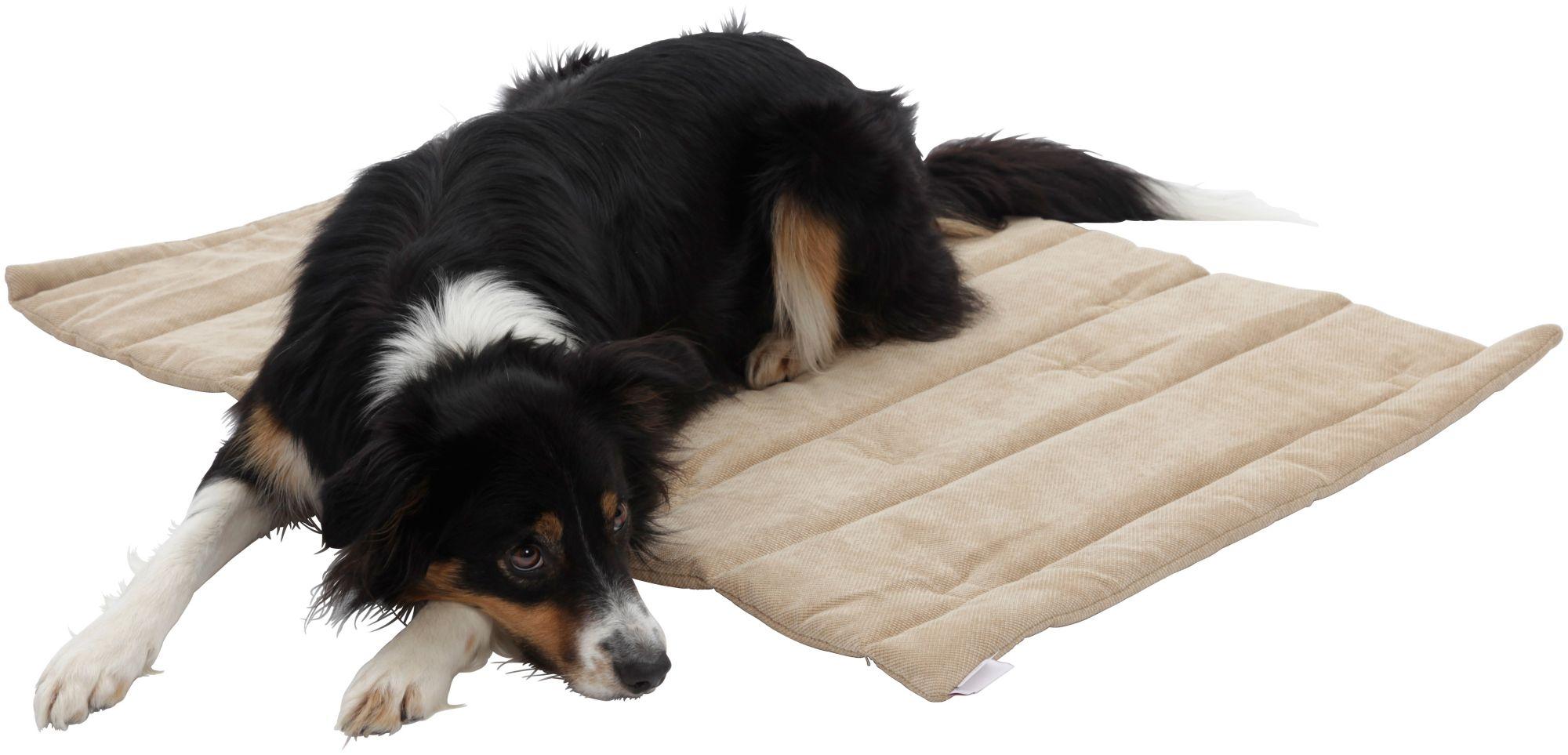 DOGS IN THE CITY Hundedecke und Katzendecke »Mat Madison«, Reisedecke mit Tragegriff, LxB: 65x95 cm,sandfarben