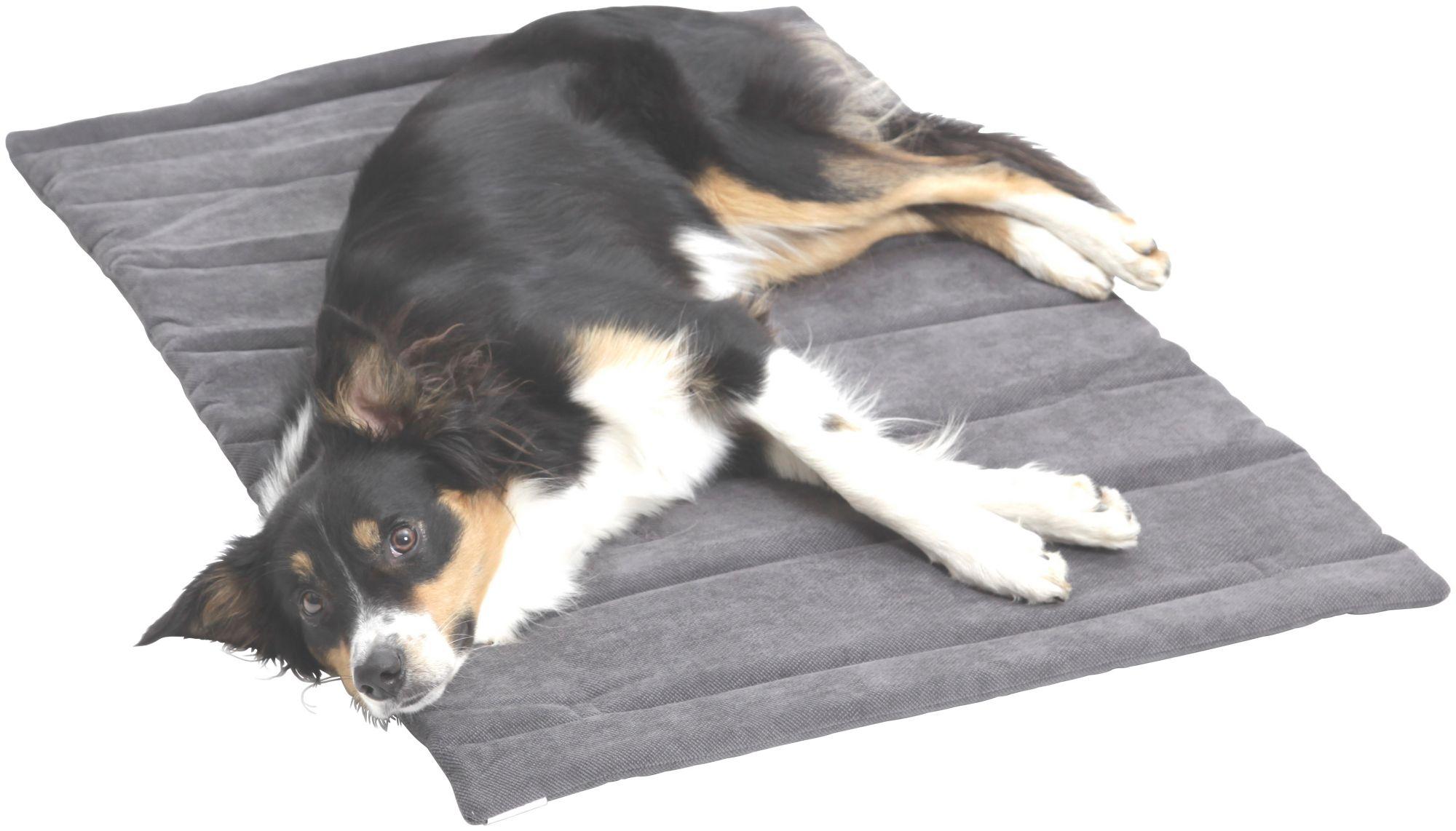 DOGS IN THE CITY Hundedecke und Katzendecke »Mat Madison«, Reisedecke mit Tragegriff, LxB: 55x75 cm, grau