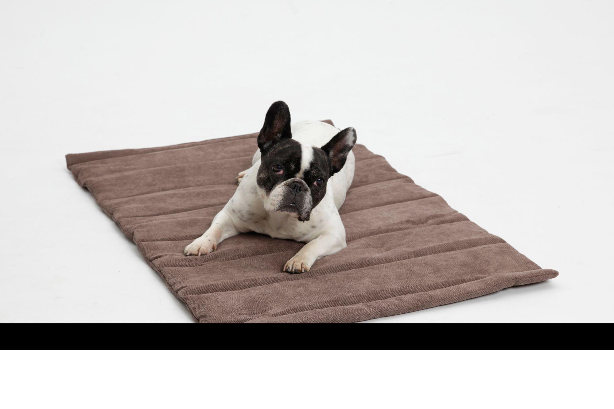 DOGS IN THE CITY Hundedecke und Katzendecke »Mat Madison«, Reisedecke mit Tragegriff, LxB: 55x75 cm, braun