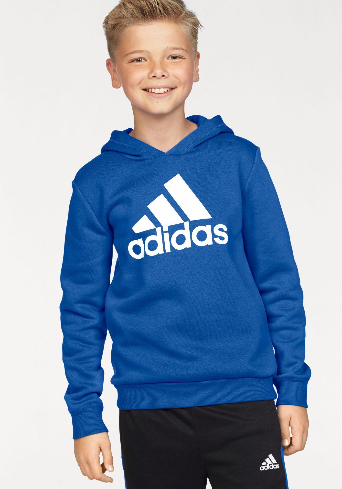 ADIDAS PERFORMANCE adidas Performance Kapuzensweatshirt »ESSENTIALS LOGO HOODIE«