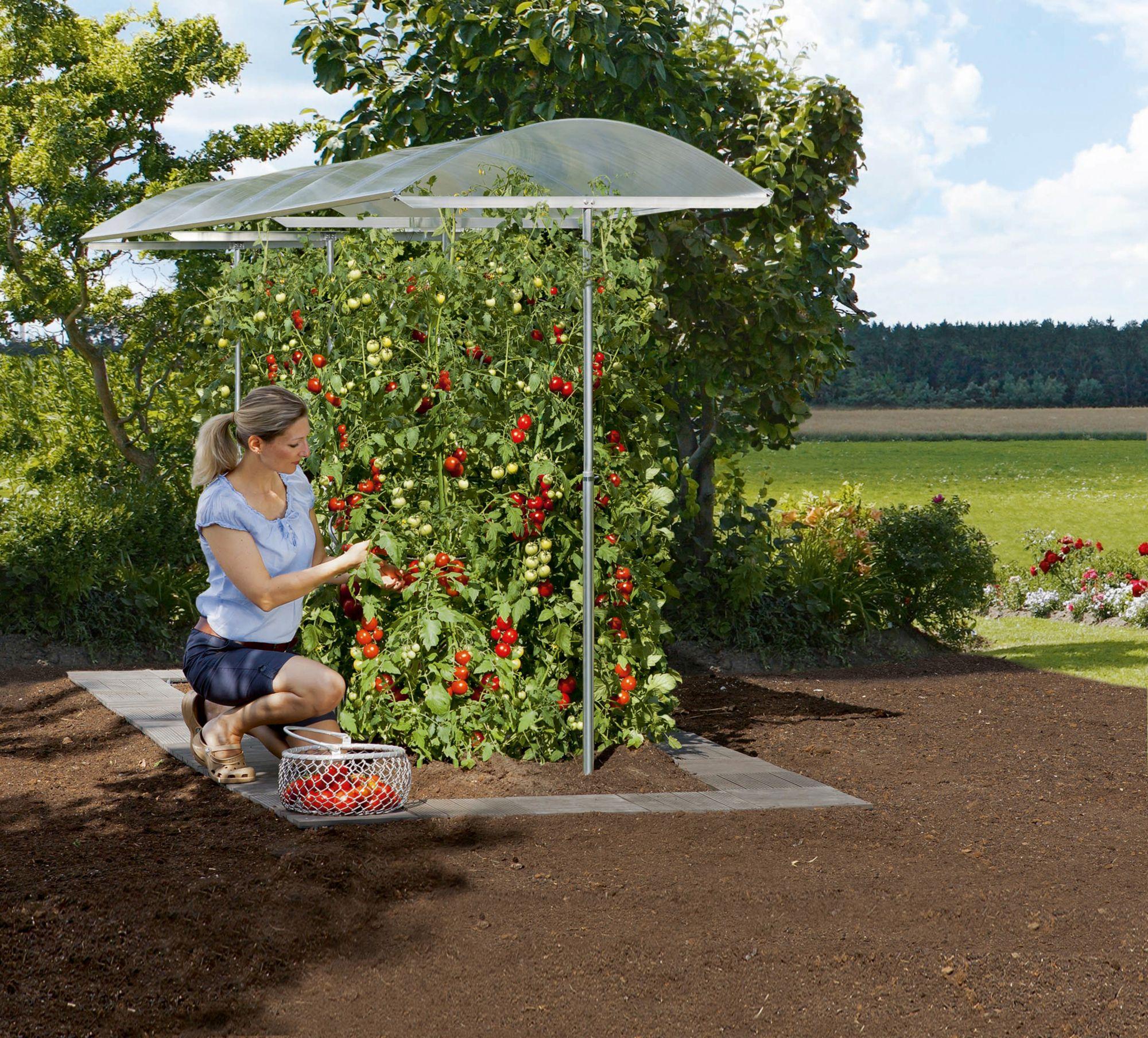 BECKMANN  Pflanzenschutzdach , BxL: 112x500 cm, silberfarben
