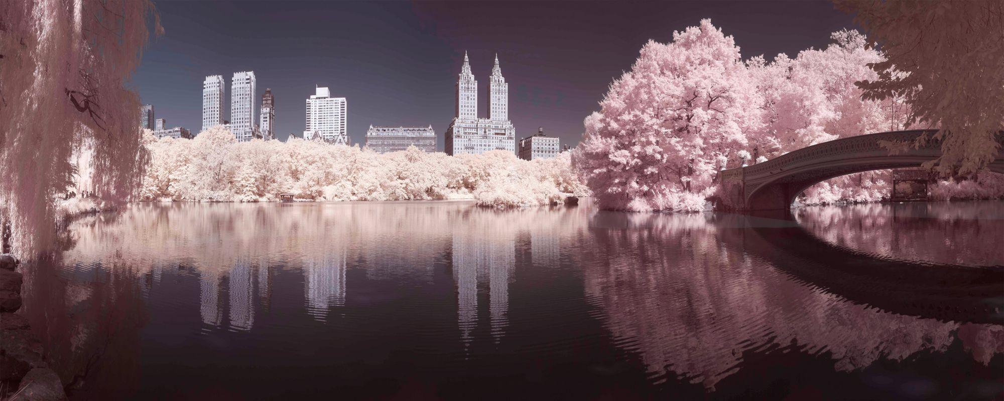 GRAHAM BROWN Graham & Brown Leinwandbild »Central Park«