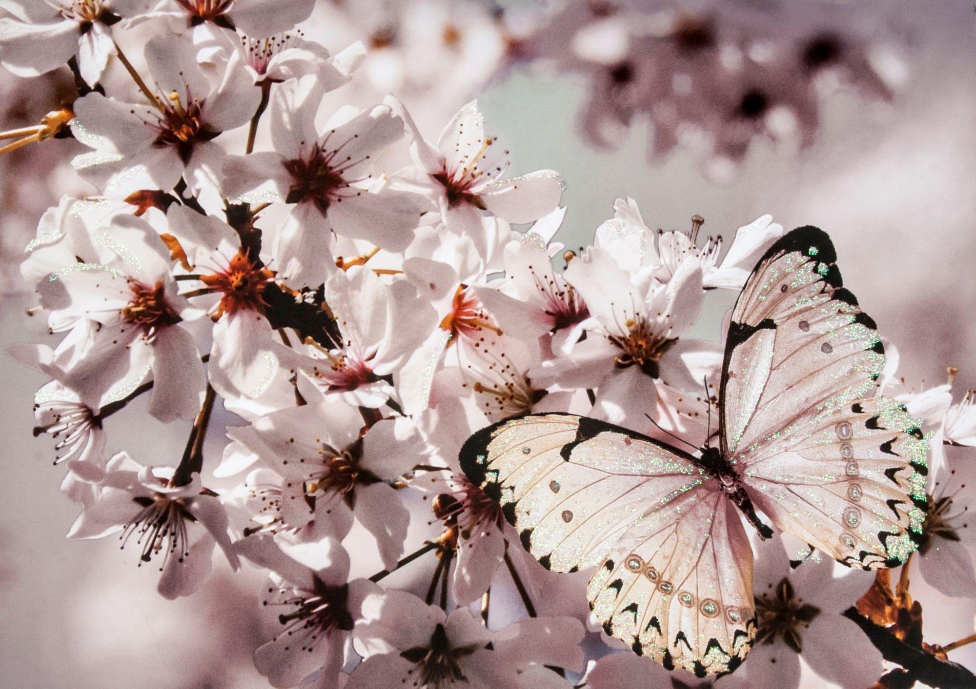 GRAHAM BROWN Graham & Brown Leinwandbild »Schmetterling«, Glitzer