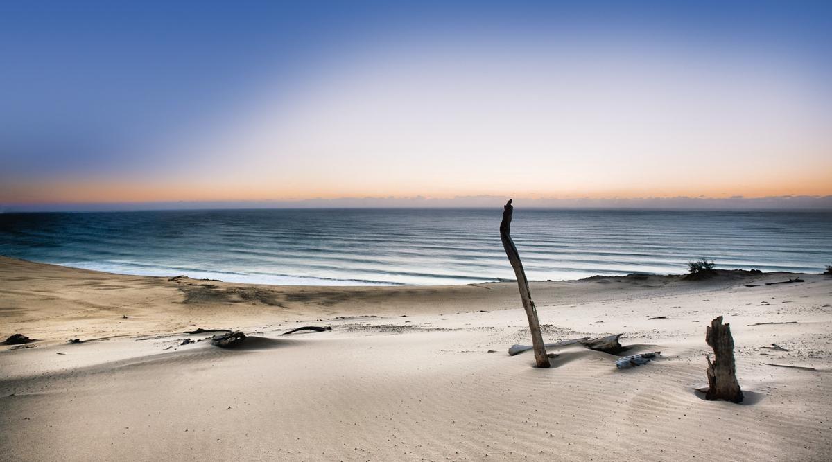 EUROGRAPHICS  Acrylglasbild »Reach for the sun«, 180/100 cm