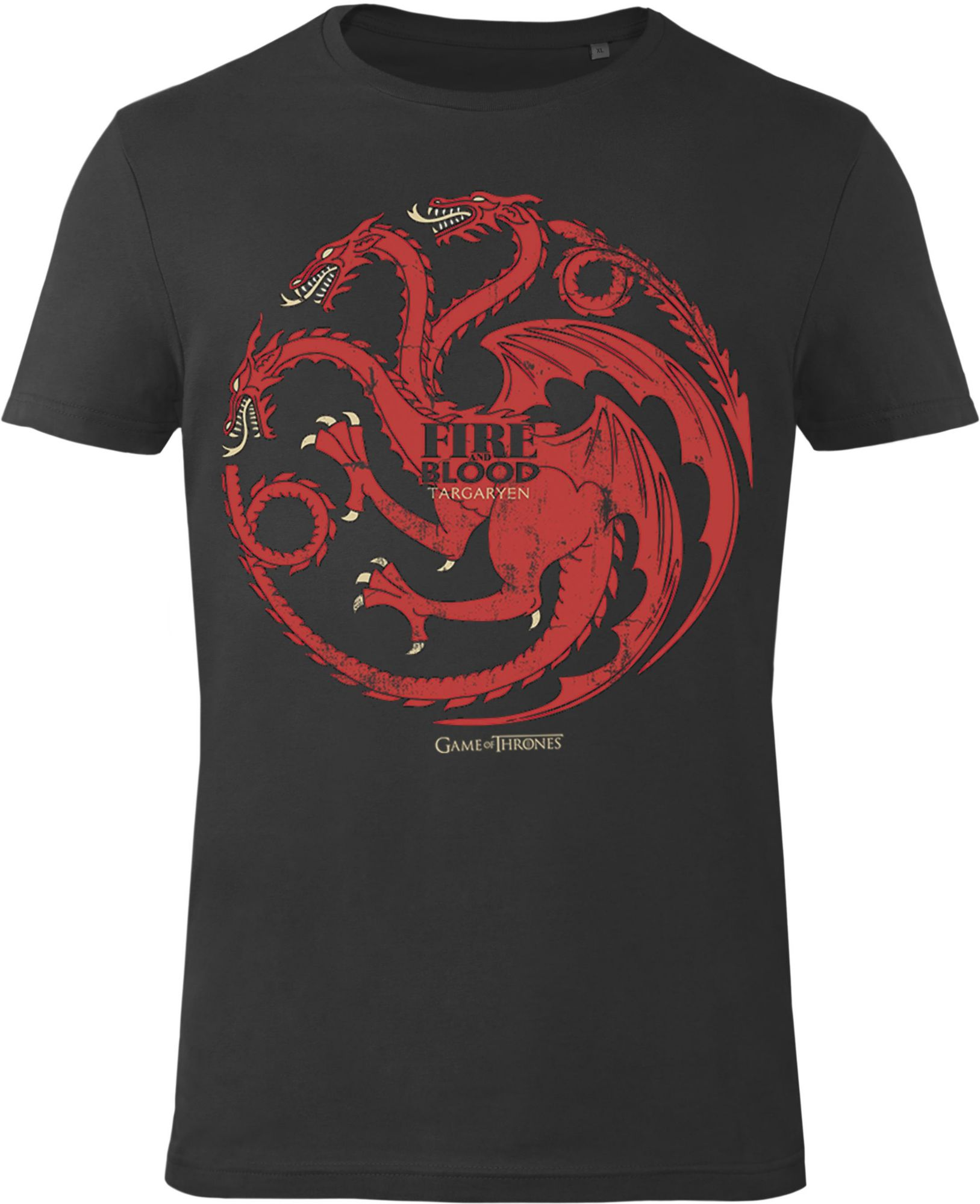 GOZOO Gozoo T-Shirt »Game of Thrones - House Targaryen - Fire and Blood«