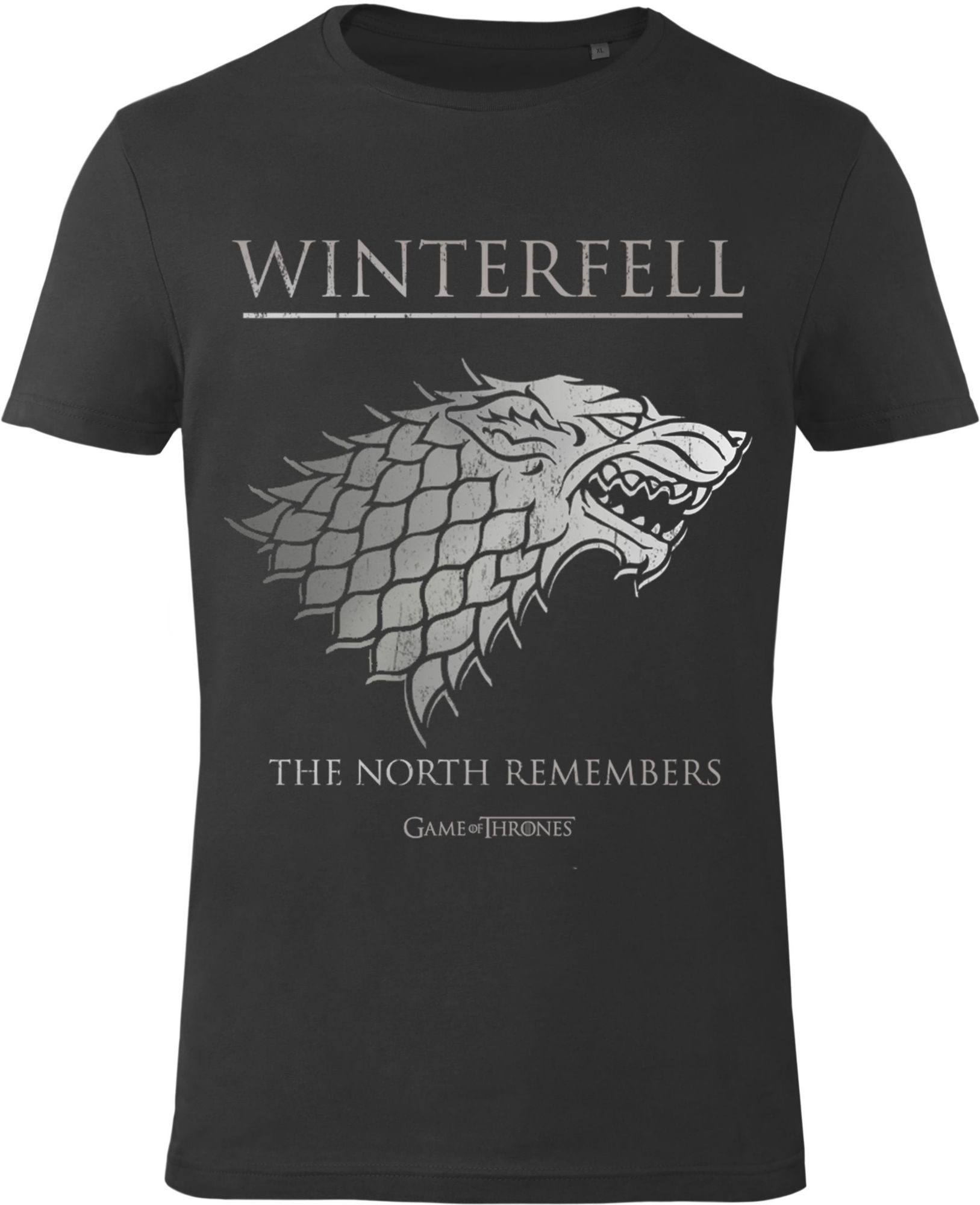 GOZOO Gozoo T-Shirt »Game of Thrones - The North Remembers«