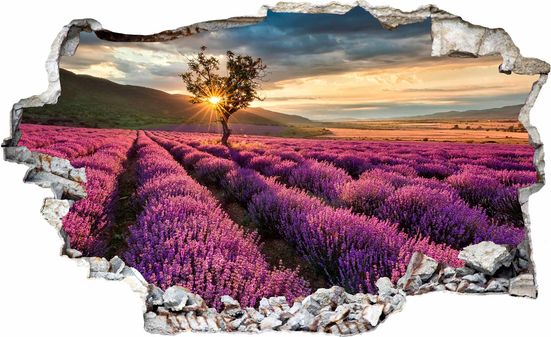 3D Wandtattoo »Lavendelblüte in der Provence«, 100/54 cm