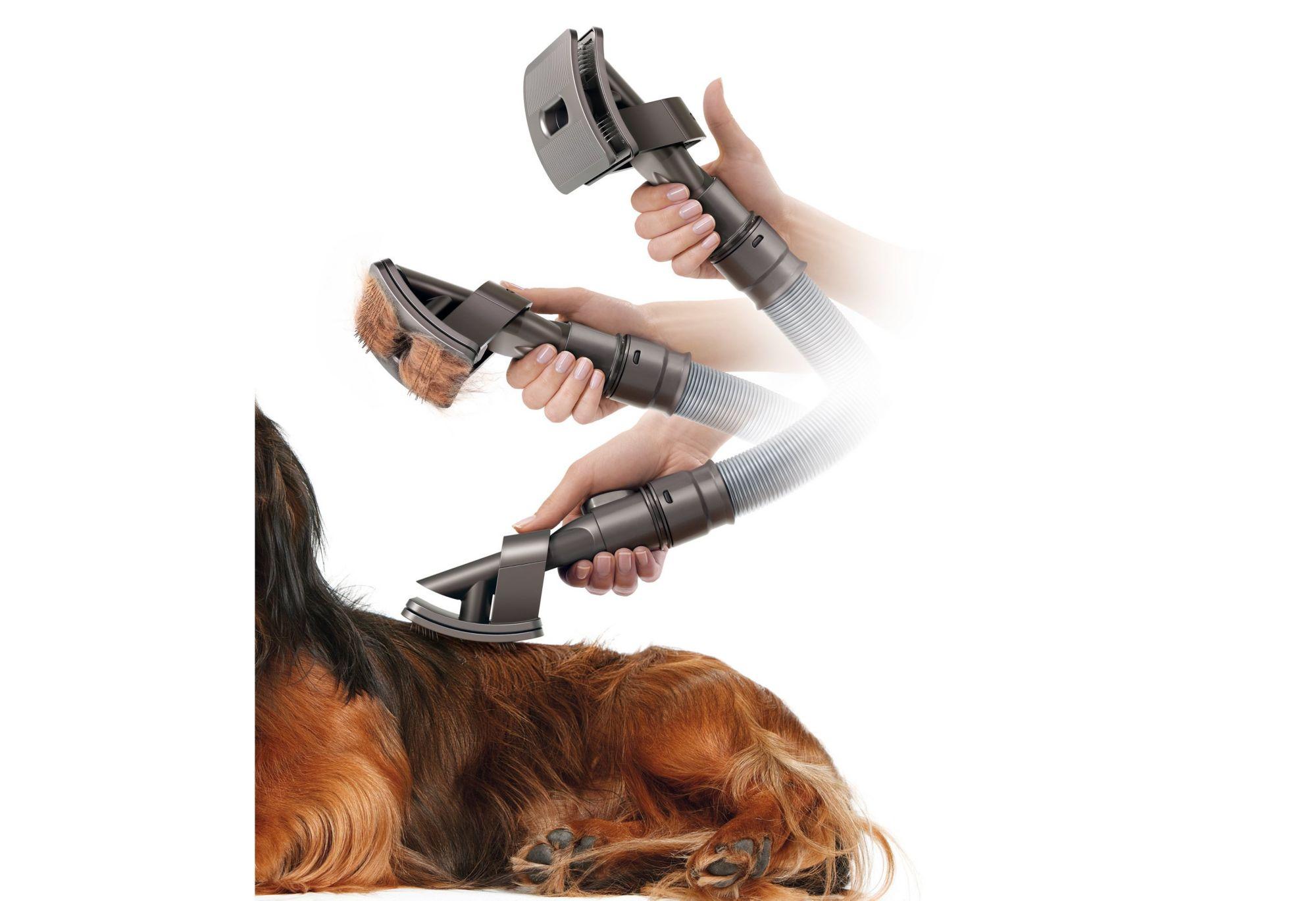 DYSON Dyson 921000-01 Groom Hundebürste