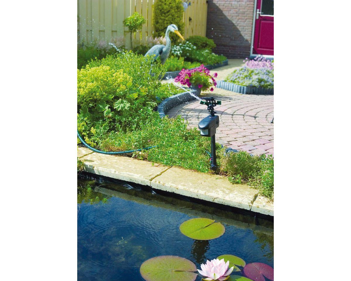 Teichpflege »Reiherschreck«