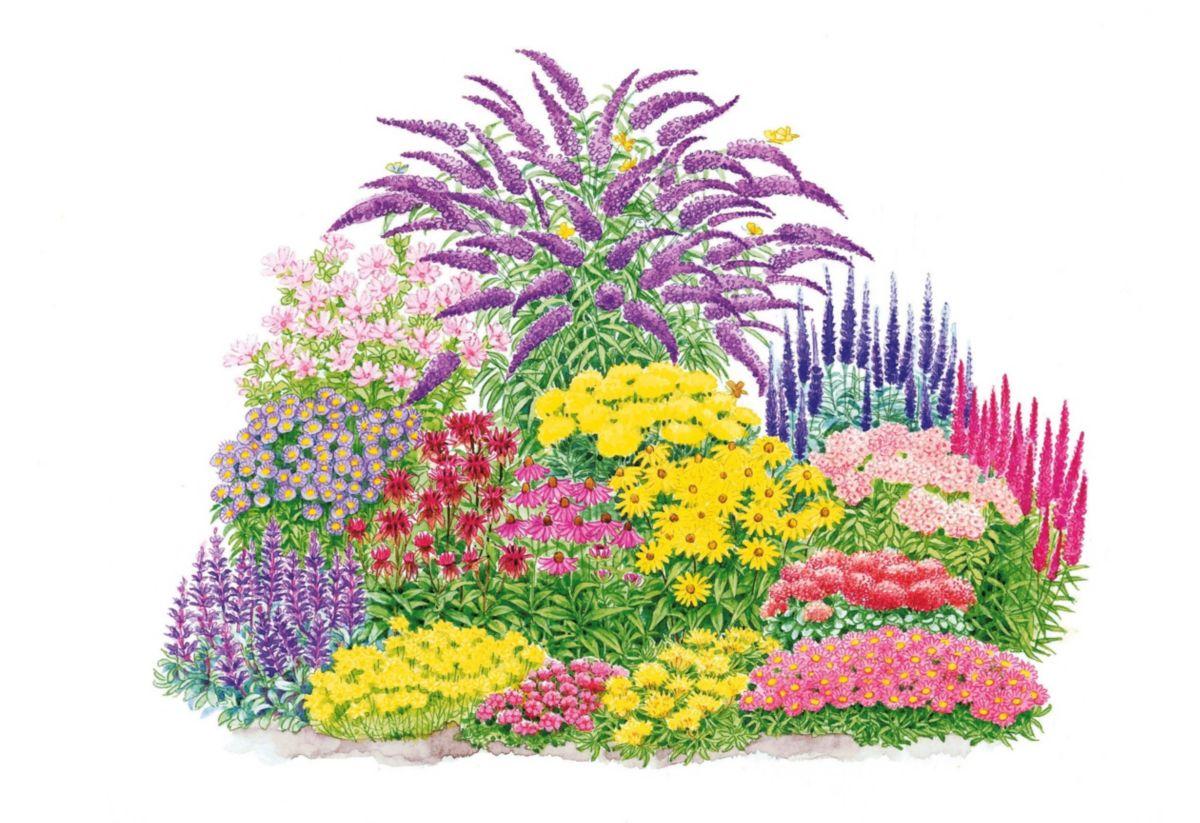 Pflanzen-Set »Schmetterlings-Set« (17-tlg.)