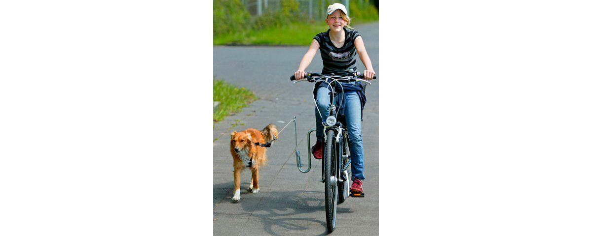 Fahrradhalter »Fahrradhalter für Hunde«