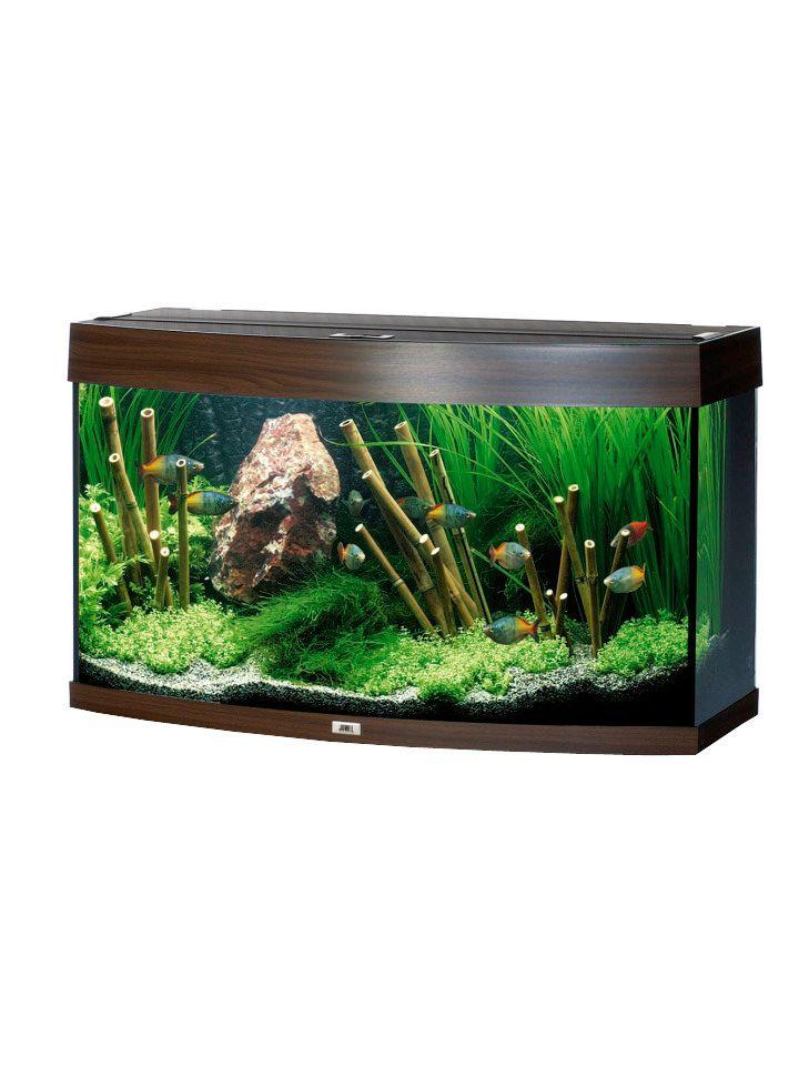 Aquarium vision 180 schwab versand s wasseraquarium for Aquarium versand