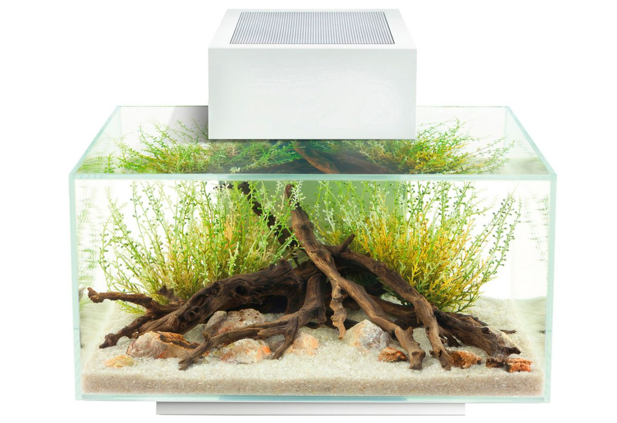 Fluval Aquarium »Edge I«