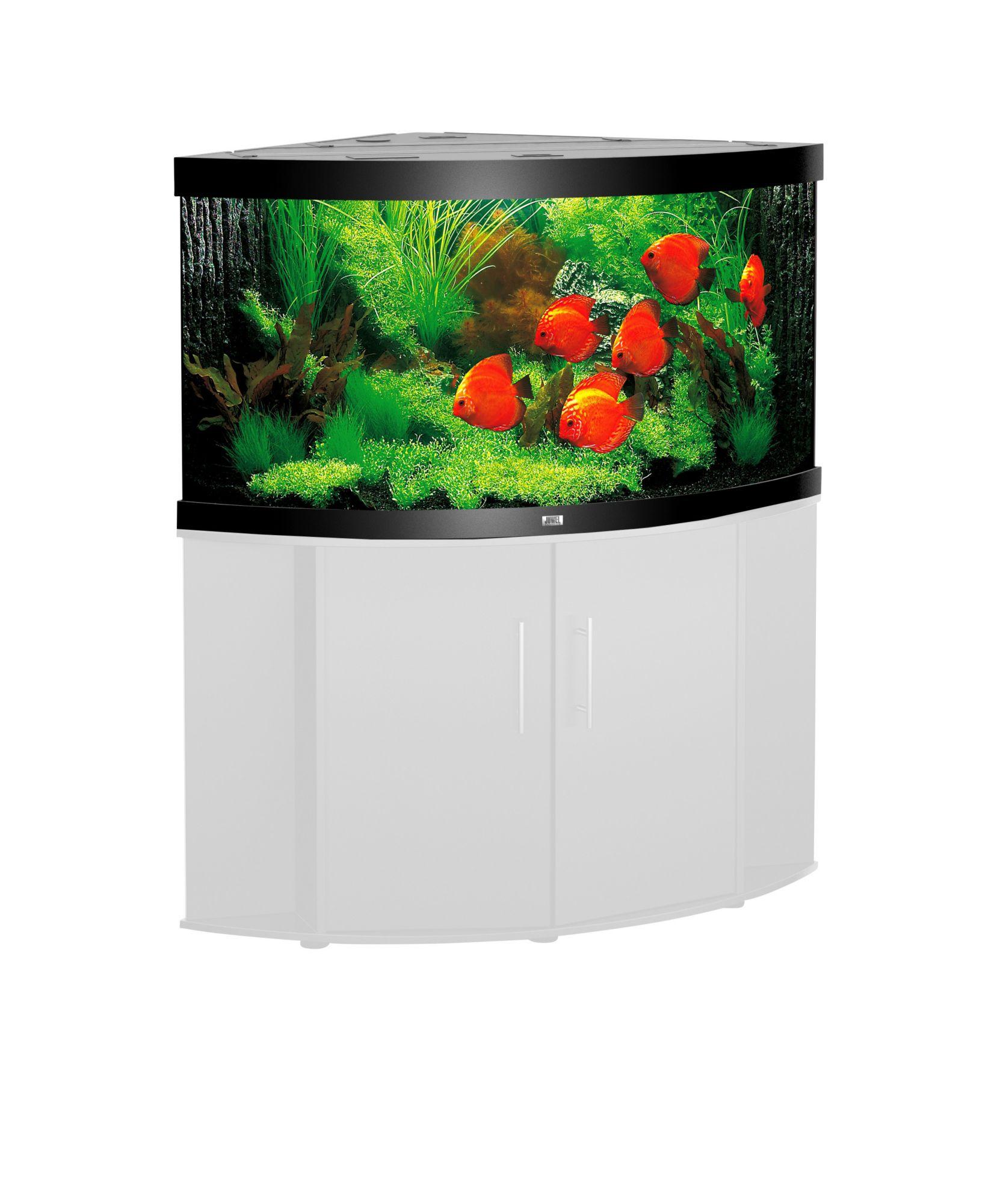 Aquarium trigon 190 schwab versand aquarien for Aquarium versand