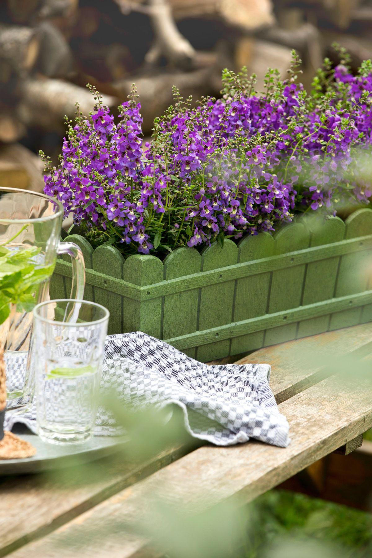 Blumenkasten »Country«, grün