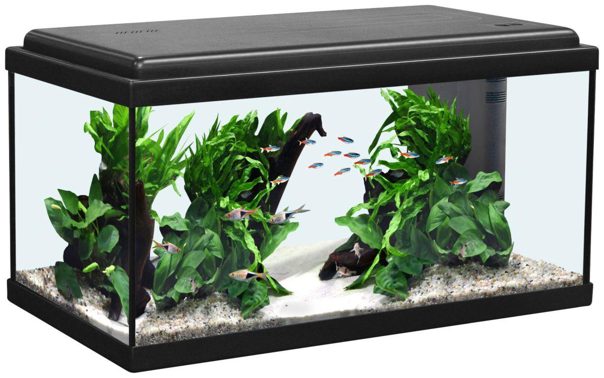 Aquatlantis Aquarium »Advance 60 LED«
