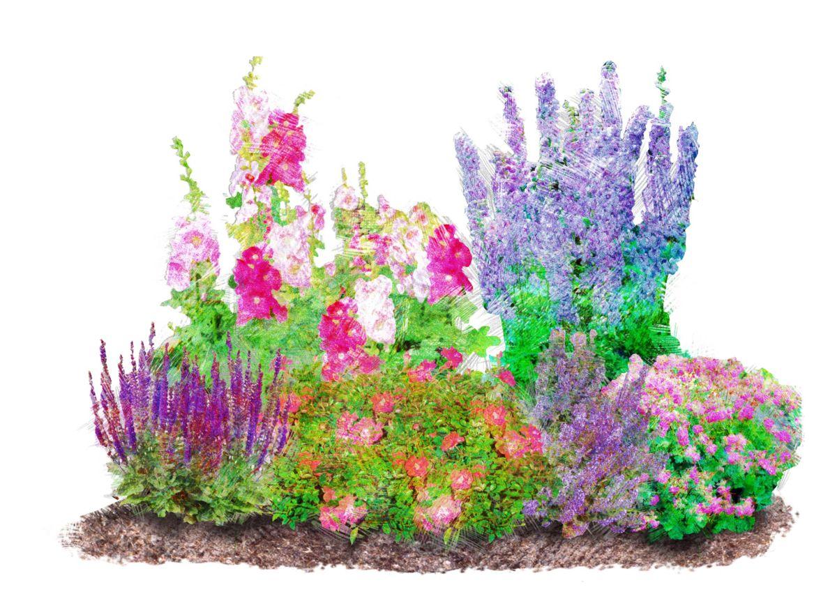 Pflanzenset »Romantischer Garten« (6 Pfl.)