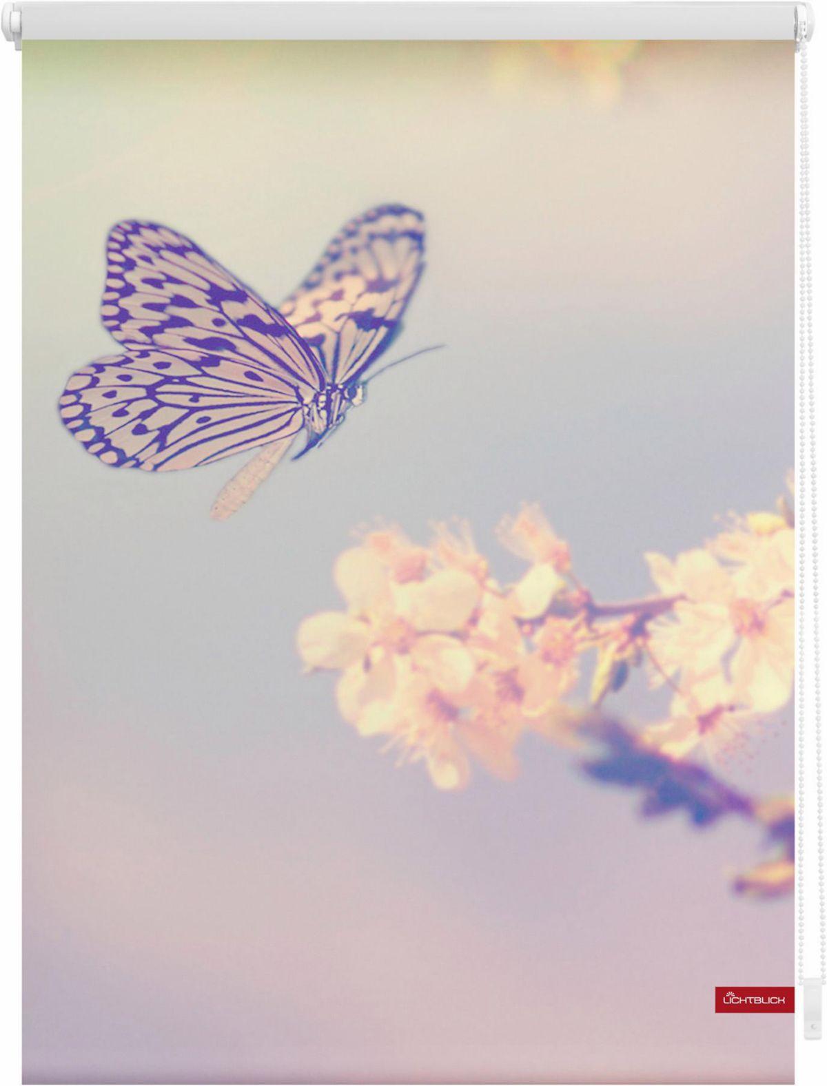 Seitenzugrollo »Schmetterling«, LICHTBLICK, Lic...