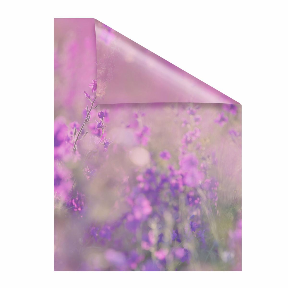 Fensterfolie, »Blumenwiese«,LICHTBLICK, hochwer...