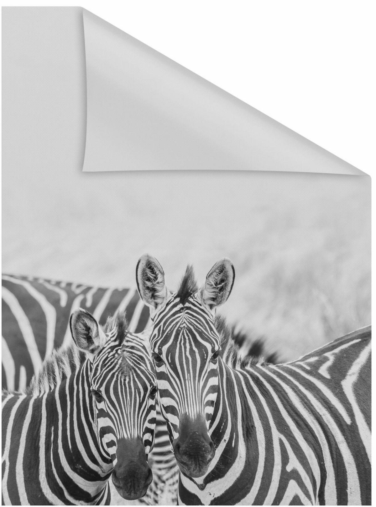 Fensterfolie, »Zebra«, LICHTBLICK, blickdicht, ...