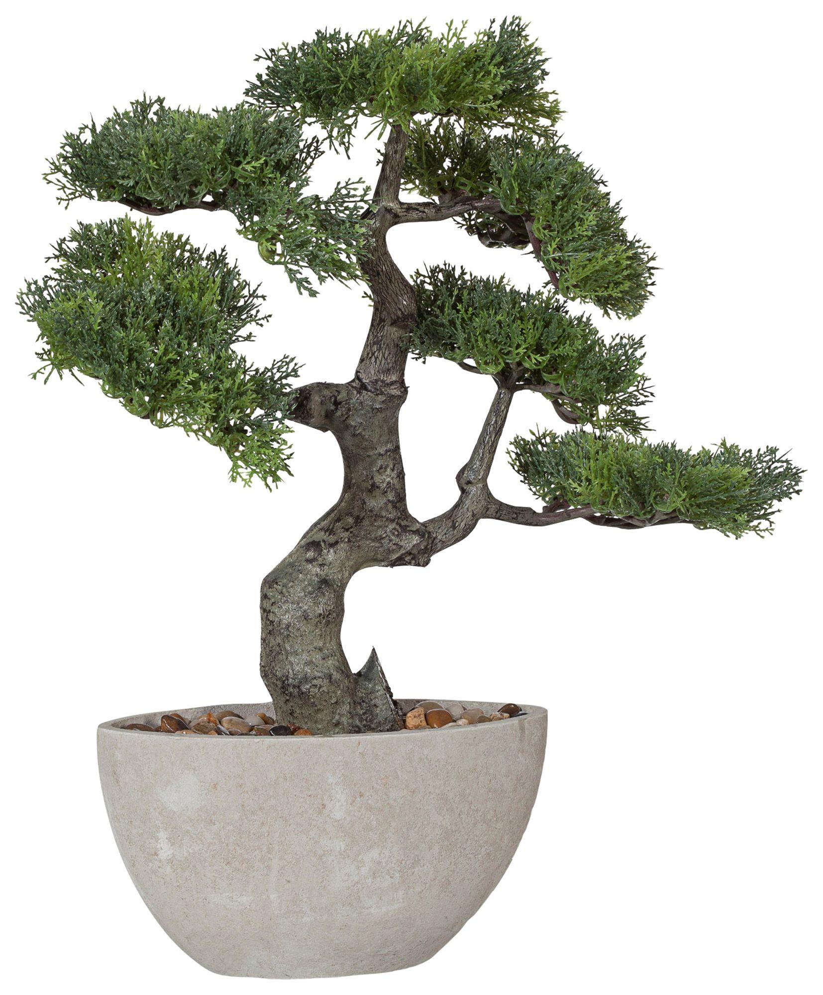 kunstpflanze bonsai g nstig online kaufen beim schwab versand. Black Bedroom Furniture Sets. Home Design Ideas
