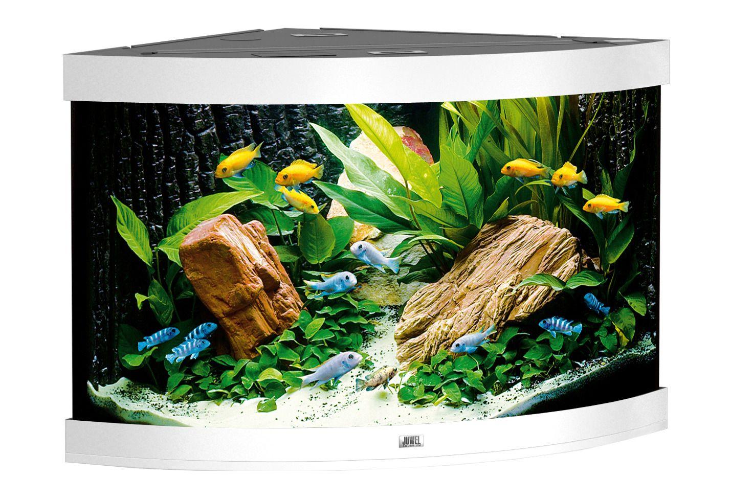 aquarium trigon 190 schwab versand s wasseraquarium. Black Bedroom Furniture Sets. Home Design Ideas