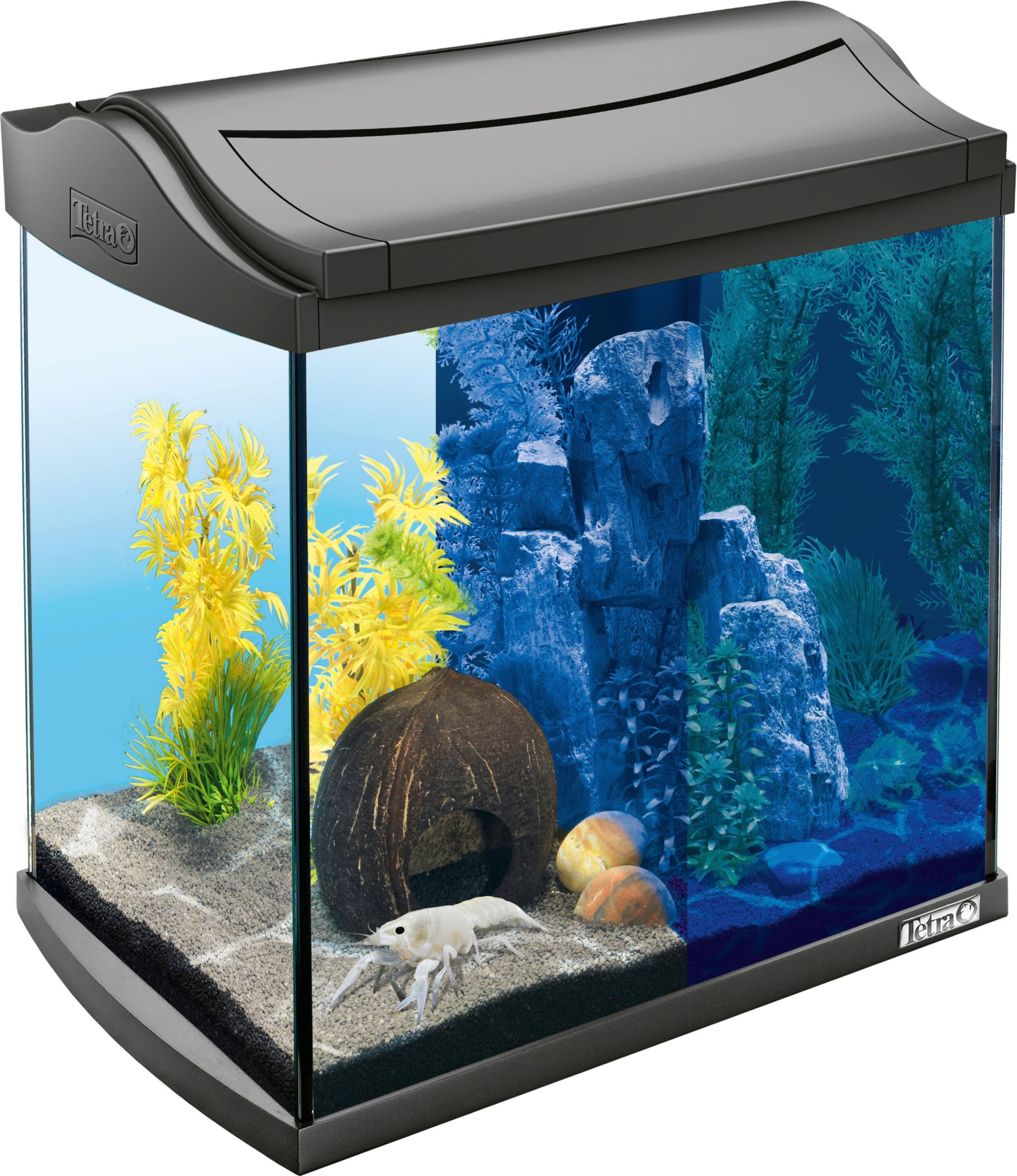 Aquarium aquaart led discovery line 30 l anthrazit for Aquarium versand