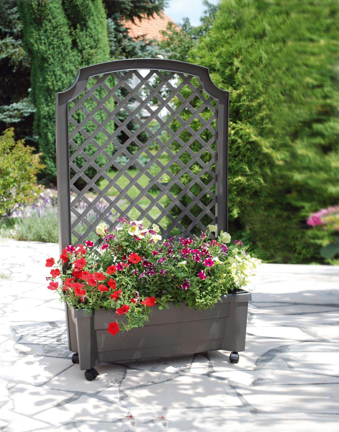 spalier mit pflanzkasten und bew sserungssystem 79 cm. Black Bedroom Furniture Sets. Home Design Ideas