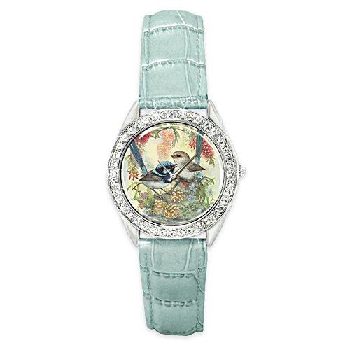 Superb Fairy Wren Watch