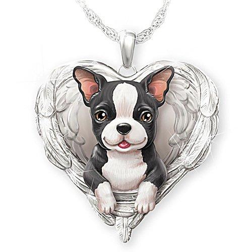 Mon Boston Terrier est un ange