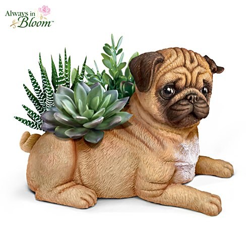 Pug Planter With Always In Bloom Succulents