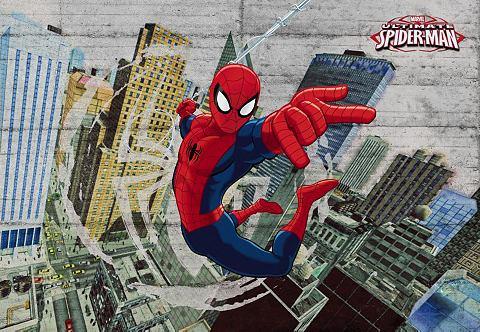 Фотообои »Spiderman Concrete&laq...