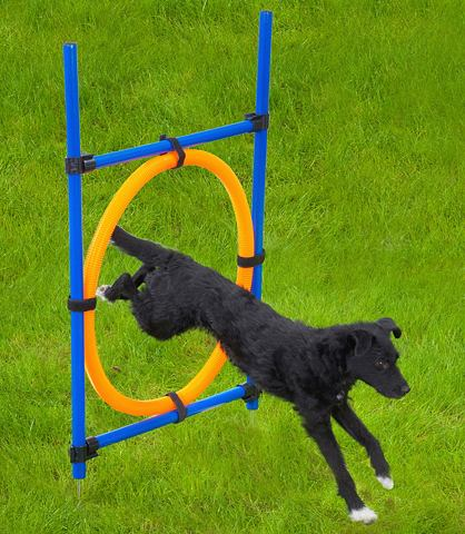 Круг для прыжков »Dog Agility Ri...