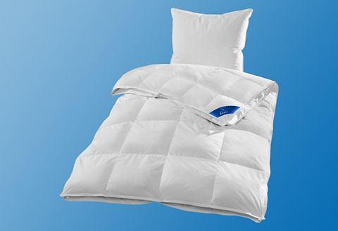 Комплект: одеяло на все сезоны + подуш...