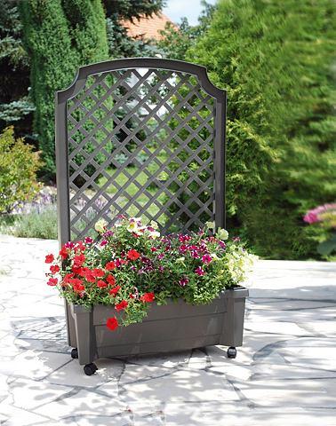 Шпалера »mit ящик для растений и...