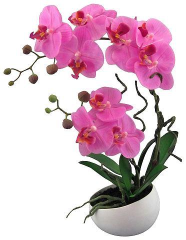Искусственное растение »Orchidee«