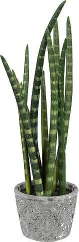Искусственное растение »Sansever...