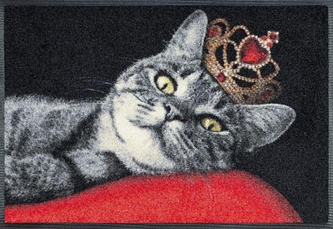 Коврик для двери »Royal Cat&laqu...