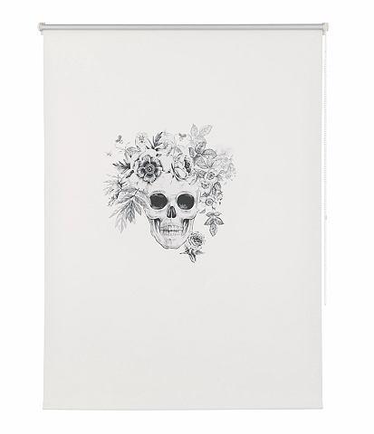 Ральфроло »Skull« Verdunke...