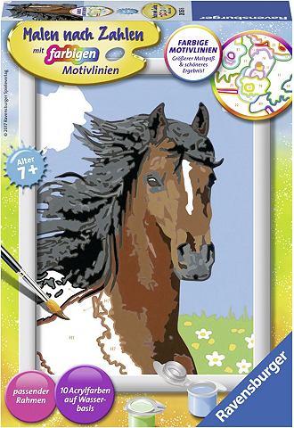 Рисовать nach Zahlen »Pferdeport...