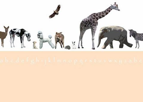 Фотообои »Tiermotive« mehr...