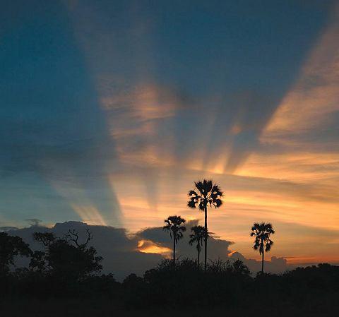 Фотообои »Sonnenuntergang«...