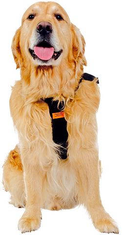 Hunde-Sicherheitsgurt »RAC Siche...