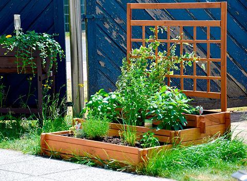 DOBAR Стенка с ящик для растений Bx Hx T 110...