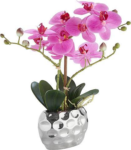 HOME AFFAIRE Искусственное растение »Orchidee...