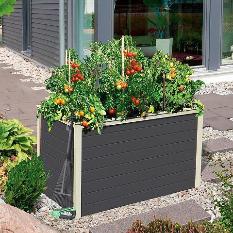 KARIBU Ящик для растений »0« BxTx...