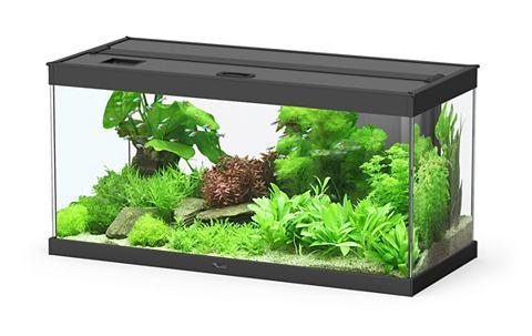 Комплект: аквариум »Style 80 LED...