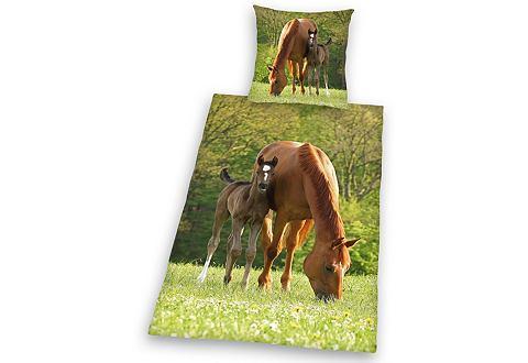 YOUNG COLLECTION Детское постельное белье »Pferd ...