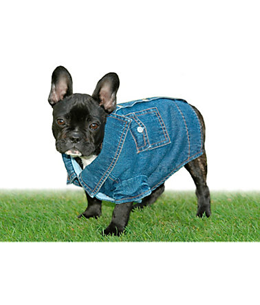 Hundemantel »Jeans-Overall - Snoopy« - blau - 26